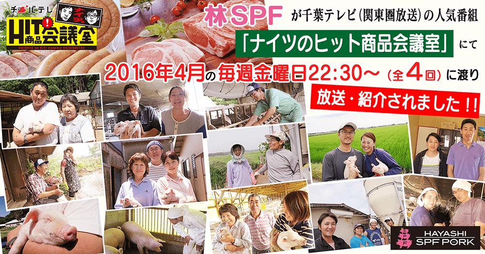 林SPFが千葉テレビの人気番組「ナイツのHIT商品会議室」にて放送・紹介されました。