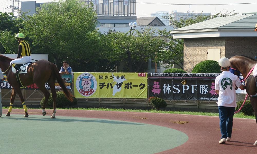 船橋競馬場 第10回千葉県畜産フェア